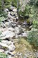 Bocognano ruisseau de Trotto.jpg
