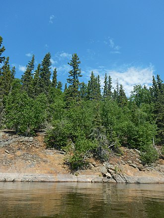 Thompson, Manitoba - The soil on the Canadian Shield is relatively shallow but still supports large trees; rocky outcrops can be commonly found around Thompson, especially near lakes and rivers.