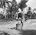 Boslandcreoolvrouw die olie uit de pitten van de Maritapalm stampt, Bestanddeelnr 252-5888.jpg