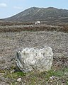 Boundary stone - geograph.org.uk - 798300.jpg