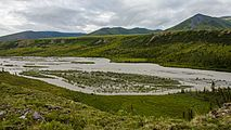 Braiding and islands in Joe Creek, Ivvavik National Park, YT.jpg