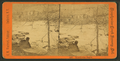 Brandywine rapids, from Robert N. Dennis collection of stereoscopic views.png