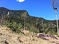 Brasil Rural - panoramio (27).jpg