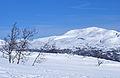 Brattefjell, Telemark (2358158177).jpg