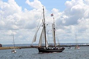 Brest 2012 Iris896.JPG