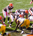 Brian Hoyer vs. Steelers 2014.jpg
