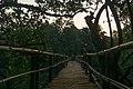 Bridge to Mandrem Beach 2020-02-27-1.jpg