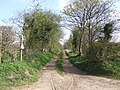 Bridleway near Woollaston Farm - geograph.org.uk - 390161.jpg