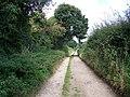 Bridleway to Church Copse - geograph.org.uk - 984575.jpg