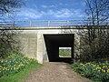 Bridleway under the A168 - geograph.org.uk - 388387.jpg