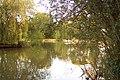 Brittens Pond - geograph.org.uk - 53371.jpg