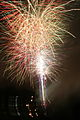 Brockwell Park Fireworks 2 (1844415019).jpg
