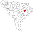 Bucercea Granoasa.png