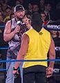 Bully Ray and Hulk Hogan Jan 2013.jpg