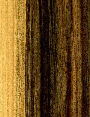 Lignum vitae - Wood of Bulnesia sarmientoi