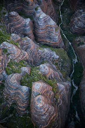 Purnululu National Park - Aerial view of the Bungle Bungle range, May 2016