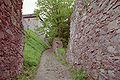 Burg Litice nad Orlici 01.jpg