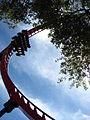 Busch Gardens Tampa 105.jpg