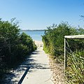Bush Track to White Beach, opposite Caltex Refinery, Botany. NSW.jpg