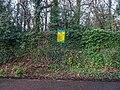 Bushy Park, Dublin -146464 (46427137782).jpg
