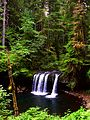 Butte Creek Falls, Cascade Mountains (14000294637).jpg