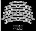 Cámara de Diputados - Bolivia - Elecciones 2020.png