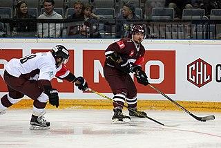 Marek Hrbas Czech ice hockey player