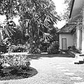 COLLECTIE TROPENMUSEUM Tuin bij het huis van Paul Spies aan de Parapattan 42 Djakarta TMnr 60030413.jpg