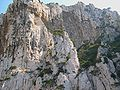 Calanques Marseille Cassis 11.JPG