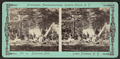 Camping out, Lake George, N.Y, by Stoddard, Seneca Ray, 1844-1917 , 1844-1917.png