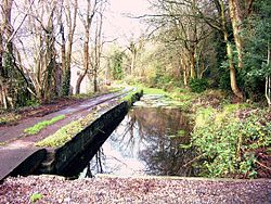 Canal near Nightingales Bush.JPG