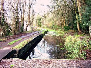Glamorganshire Canal - The Glamorganshire Canal at Nightingales Bush, Pontypridd.