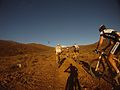 Cape epic stage 5.jpg
