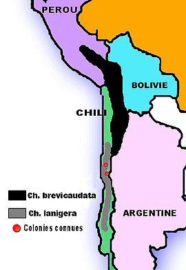 Le Chinchilla 270px-Carte-Popullation_des_chinchillas