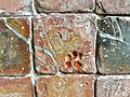 Cat's paw print, Chapter House floor tile, Glenluce Abbey, Kirkcudbright.jpg