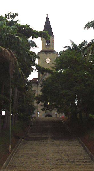 Leopoldina, Minas Gerais - Cathedral of St. Sebastian