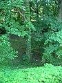 "Catholic Cemetery in ""Old Chelm"" - panoramio - Sławek Zawadzki (5).jpg"