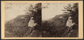 Catskill Mountain House, from North Mountain, by E. & H.T. Anthony (Firm) 2.png