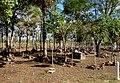 Cemitério do Batalhão - Monumento Nacional da Batalha do Jenipapo 02.jpg