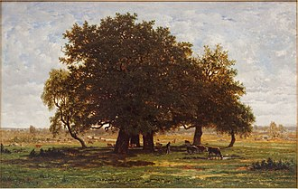 Broad-leaved tree - Image: Chênes Apremont by Rousseau Louvre RF1447 n 1