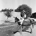 Chłopiec na osiołku - Afganistan - 001988n.jpg
