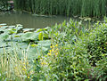 Chanticleer Pond Garden Bed 3.jpg