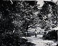 Children playing in a stream, Singapore Wellcome V0037015.jpg