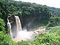 Chutes Ekom-Nkam - panoramio.jpg