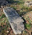 Cieszowa cmentarz żydowski macewa7 21.10.2012 p.jpg