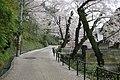 Climbing Utatsuyama (2440231846).jpg