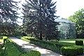 Cluj-Napoca Botanical Garden kz07.jpg