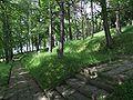 Cmentarz na Jabłońcu BW 34-9.jpg