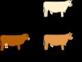 Co-dominanza nel bovino roano (modificato da originale).png
