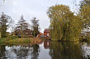 View of millpond upstream of weir, looking toward the Mill building. The Mill building is largely obscured by a very pale yellow-green weeping willow on the right. A small clump of bulrushes and two spindly conifers on the left frame the mill cottage where the restaurant is. The water is placid, and as flat as the proverbial mill-pond. The trees and the building are reflected perfectly in the water, as is the grey and featureless sky.